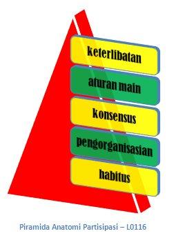 PiramidaAnatomi